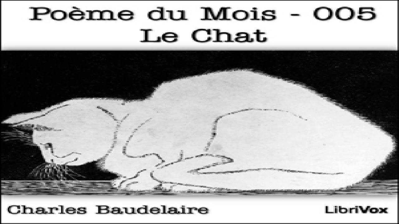 Poème Du Mois 005 Le Chat Charles Baudelaire Poetry Audiobook Full French