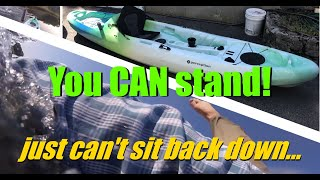 Perception Access 11.5 Sit on Top Kayak. Long time owner review