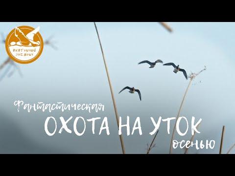 Фантастическая охота на уток осенью (Охотничий дневник #2)
