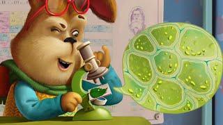 БАРБОСКИНЫ: микро и макро миры. Интерактивная книга для детей.