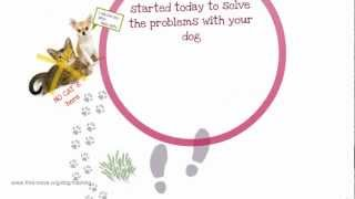 Dog Training Tips!train Your Dog - To Be The Perfect Companion And Have Fun