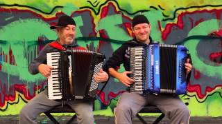 Accordion House Music Instrumental - Akkordeon- Harmonika Accordeon acordeon akordeon