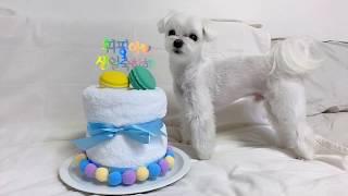 [만들기] 생일케이크 대체 타올 케이크 만들기