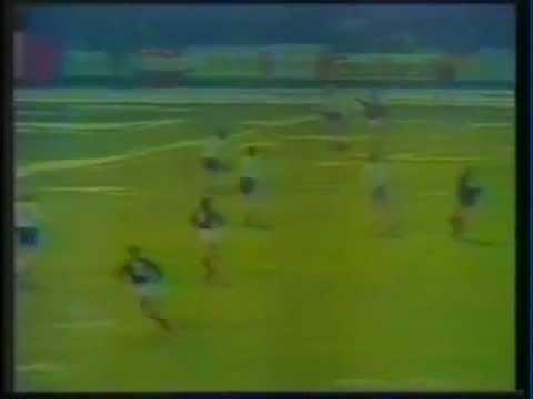 fußball em 1984