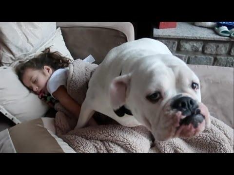 She Tore Her Knee! (WK 312.6) | Bratayley