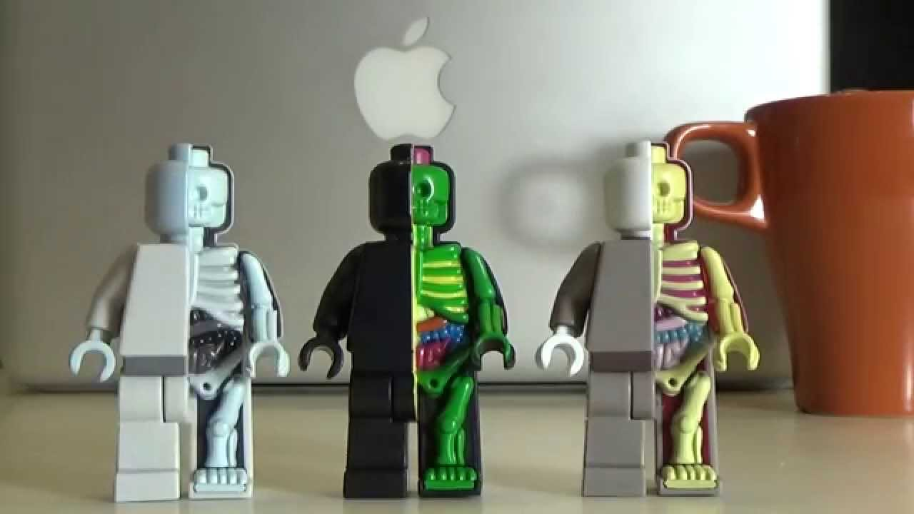 COFFEE BREAK! Quick look at Micro Anatomic (Lego Minifigure) by ...