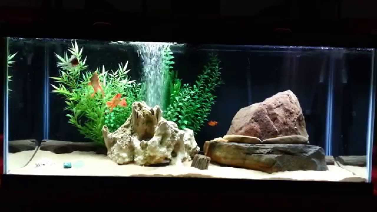 how to keep a goldfish tank clean without a filter