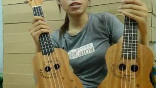 Hướng dẫn chọn đàn Ukulele- Guitar Việt Mỹ
