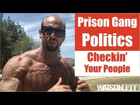 Download Prison Gang Politics- Checkin' Your People