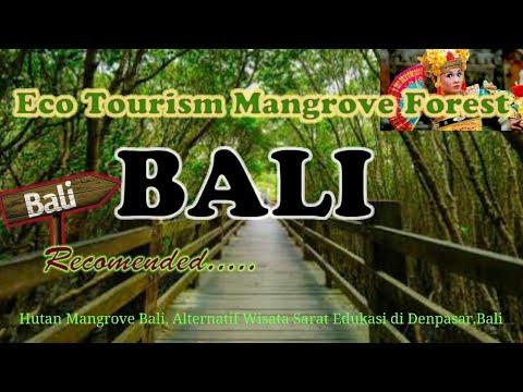 Bali Ecotourism Mangrove Forest Ekowisata Hutan Mangrove