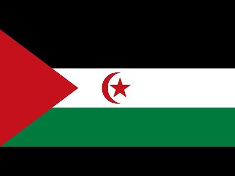 Флаг Сахарской Арабской Демократической Республики.