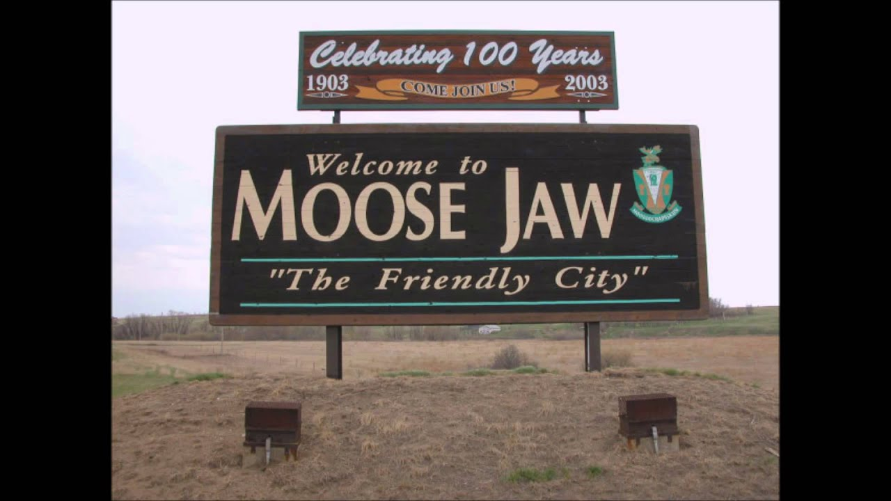 moose jaw latino personals Company profile & key executives for moose jaw ford sales ltd (0910834d:-) including description, corporate address, management team and contact info.