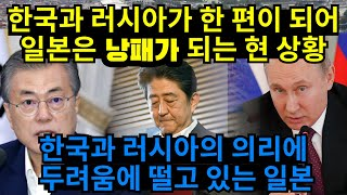 일본과 경제전쟁 중에 우리편이 생겼다! 러시아가 한국을 돕고, 일본과 안좋은 상황
