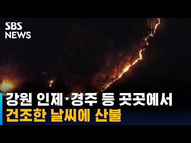 건조한 날씨에 전국 곳곳에서 산불 / SBS