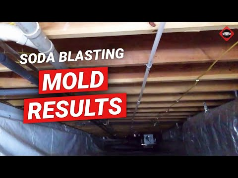 Crawl Space Mold Removal Knoxville | Soda Blasting Mold In Crawl Space