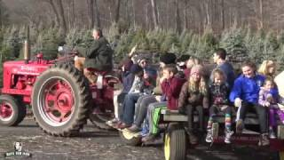 Maple Row Farm Offers More Than Christmas Trees During the Holidays