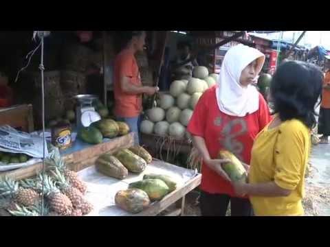 Safer Food for a Growing Population