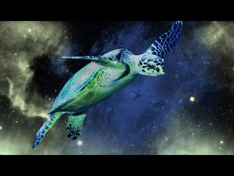 Anishinaabe turtle song