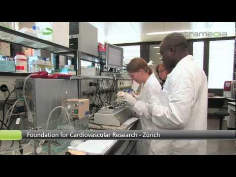 Foundation for Cardiovascular Research, Zürich; Zurich heart house: BEAUTY, WELLNESS & HEALTH: ...