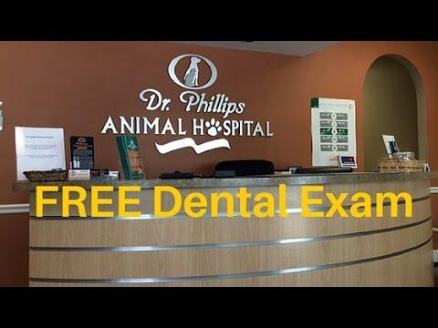 Dr Phillips Animal Hospital - 407 352-2579 - Orlando FL Veterinarians