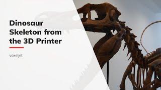 Psittacosaurus sibiricus - Duplicating a dinosaur skeleton via 3D printing