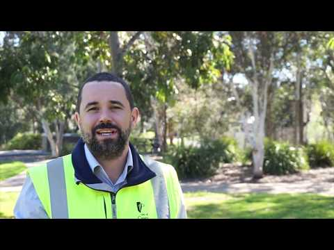 Meet Bryson! The City of Casey's Arborist