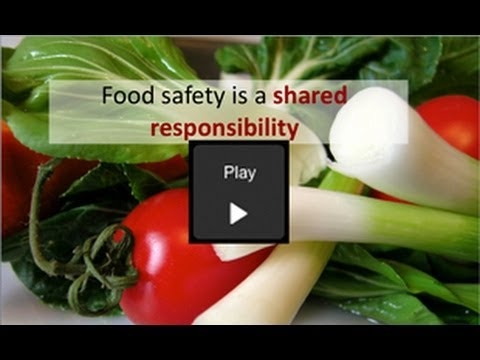 Public-Private Partnerships and Global Food Safety Systems