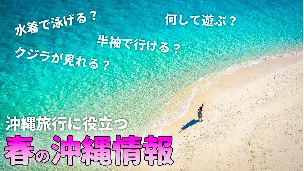 【沖縄情報】春に沖縄旅行に行く前に見よう!天候・気温や服装・クジラやスキンダイビング・オシャレなカフェ巡りなどおすすめ情報満載!