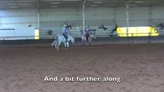 A bolting Percheron at a clinic