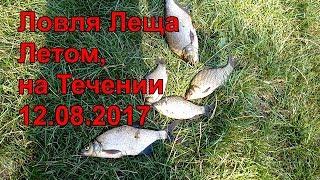 Ловля Леща Летом на Фидер или Ловля Леща (Рыбалка на Леща)