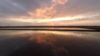 【NIIGATA-SORADORI】越後平野 恵の地の夕景 新潟市