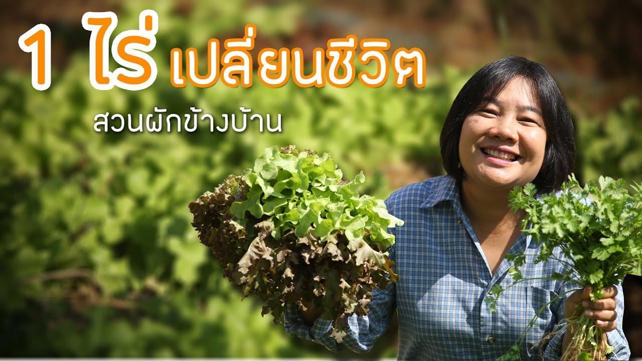 สวนเกษตร 1 ไร่ เปลี่ยนชีวิต