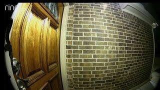 Doorbell Cam Captures Slithering Snake