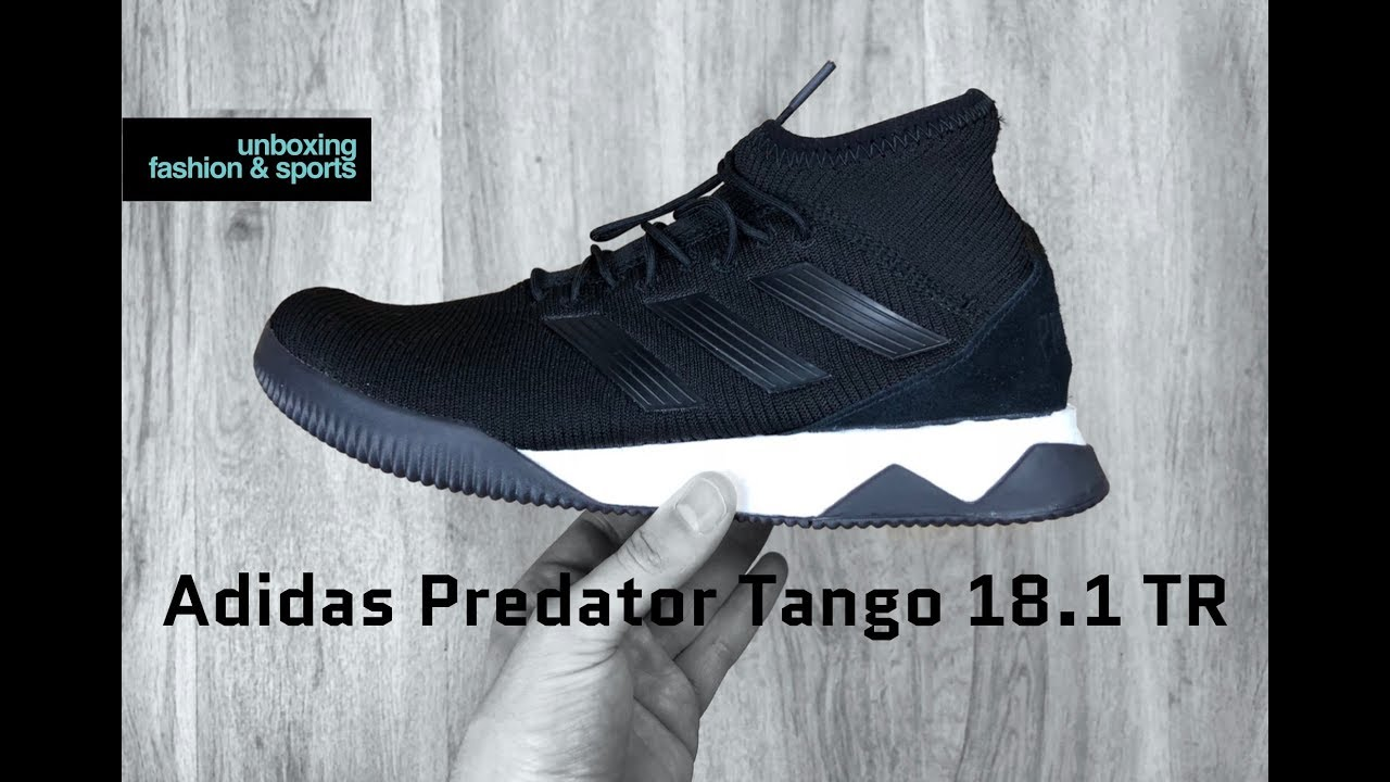 6d7630ad2a63 Adidas Predator Tango 18.1 TR  Nitecrawler Pack