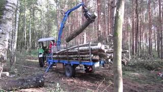 Waldarbeit mit Ladekran am Famulus 36