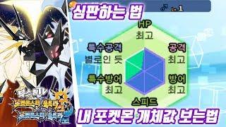 포켓몬스터 울트라 썬 문 공략 - 심판하는법 / 내포켓몬 개체값 보는법 (포켓몬스터 울트라썬문 공략 / Pokémon Ultra Sun·Moon)