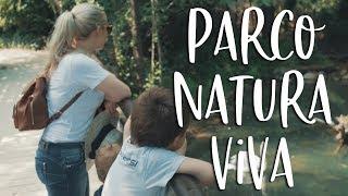 Youtube video VLOG: Družinsko potepanje z avtodomom po Italiji - Gardsko jezero: Parco Natura Viva
