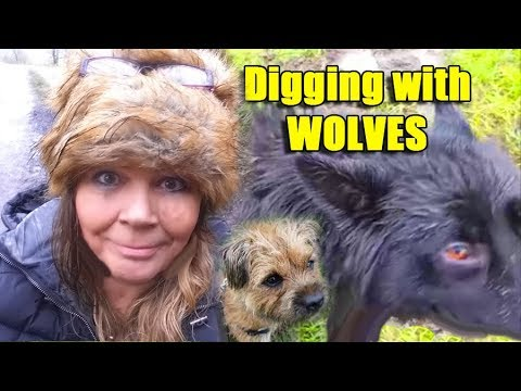 Digger Dawn - Disaster Digging Day, Mud, wolves and lost swordy spades