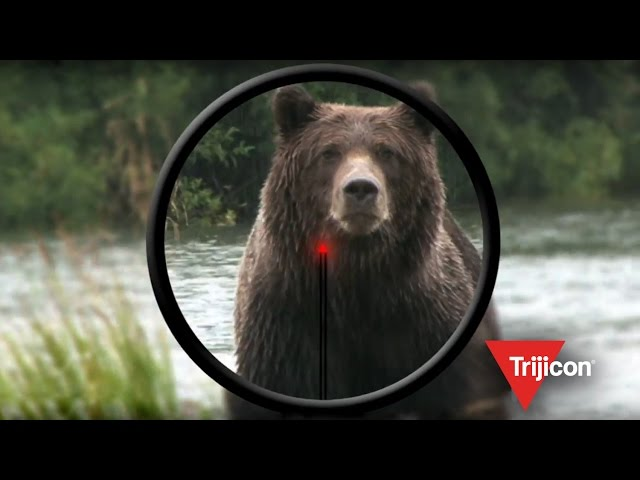Trijicon 60 Second DSCI Ad