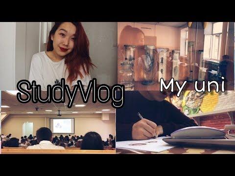 StudyVlog: будни в универе, учеба в кофейне и почему стоит пить воду