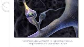 Полуэктова Е.А. Клиническая фармакология лоперамида.Показания к назначению. Критерии выбора дозы(74 Сессия Школы (март 2013г), 2013-10-26T07:30:20.000Z)