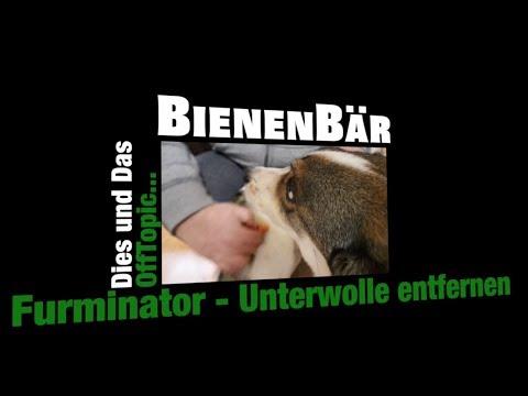 Furminator - Unterwolle beim Hund entfernen