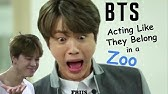 bts acting like their zodiac signs - YouTube
