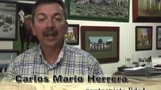 Proceso de inseminación artificial en ganado lechero- TvAgro por Juan Gonzalo Angel