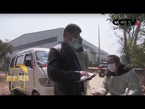 """《遍地英雄》王维:林港村的""""家园卫士"""" 20200324   CCTV农业"""