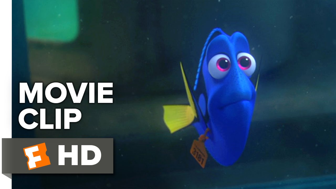 Fall Out Boy Wallpaper 2015 Finding Dory Movie Clip Short Term Memory Loss 2016