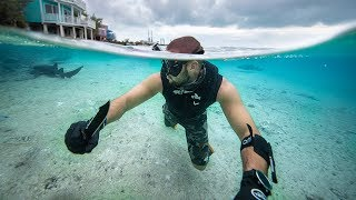Spearfishing Beautiful REMOTE Island For SURVIVAL!!! (Shark feeding)
