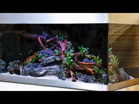 Simple Aquascape Tutorial - Oase Highline 200 Nature Aquarium