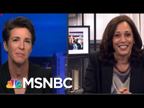 Could You See The Fly? | Rachel Maddow | MSNBC