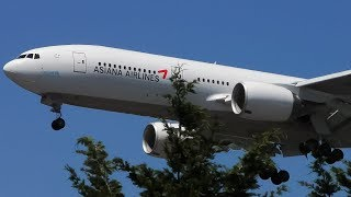 7 EXTREMELY CLOSE Landings | SeaTac Seattle Airport Plane Spotting